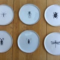 6 assiettes Insectes