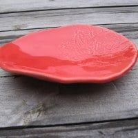 Coupe plate rouge